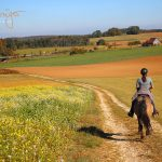 Wanderritt Goldener Oktober