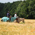 Reitend zwischen den Feldern auf Maultieren